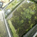 Tips For Keeping Your Car Pollen Free!