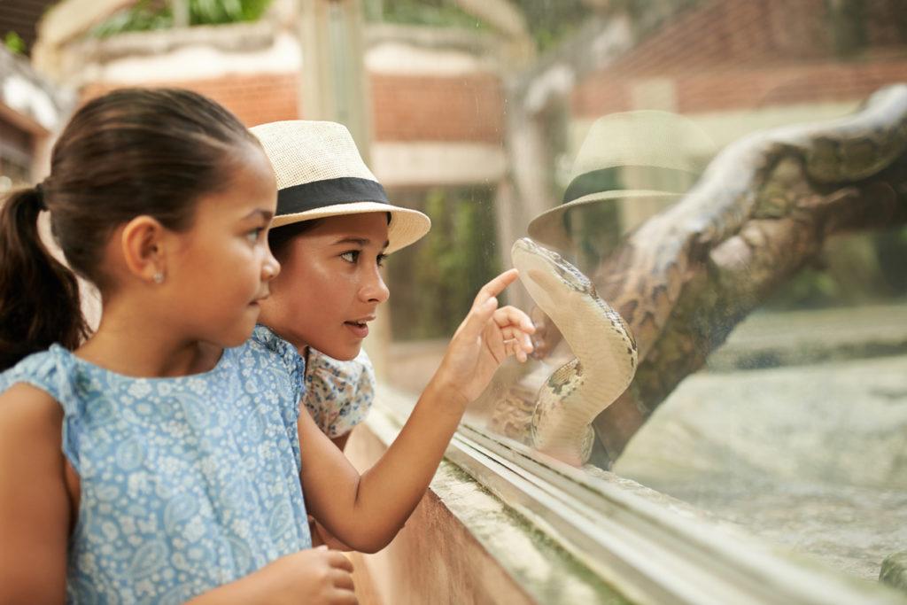 girls pointing at python in terrarium
